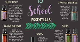 Back to School Essentials for Every Student - Essentials Guru