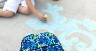 Gecko Print Backpack  Backpacks for School School Essentials  Backpacks for Travel  Backpack diaper bag