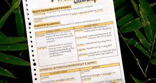 "nahstudies: "" ° ͜ʖ° 16/100 days of productivity close up of poa theory,, g..."
